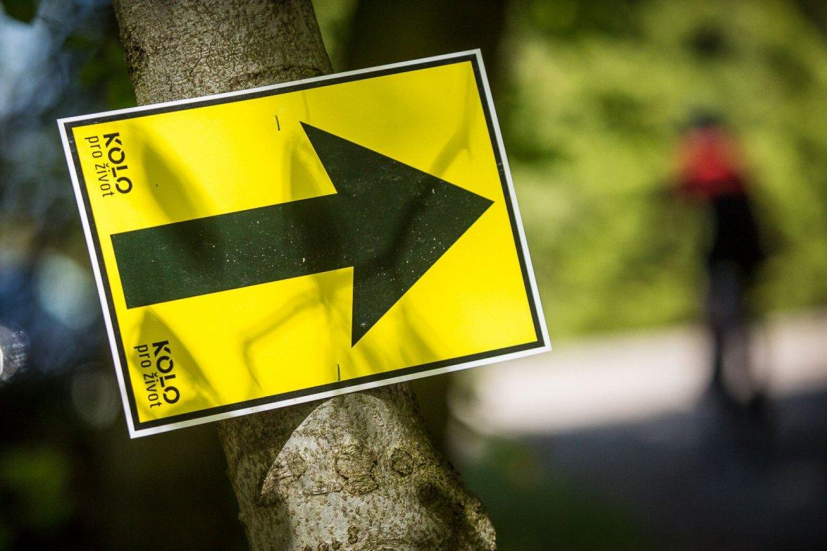 Pokus o sabotáž závodu ČT Trans Brdy: hřebíky a přeznačené tratě